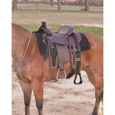 Cashel Step-Up Stirrup