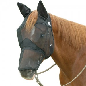 Cashel QR Long Nose / Ears