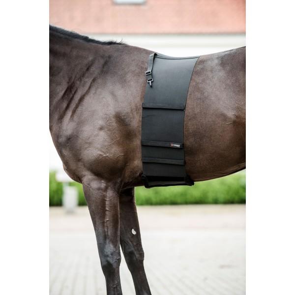 Catago Body Shield Belly Wrap